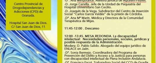 ENLACE organiza una Jornada sobre Patología Dual y Discapacidad Intelectual en Granada