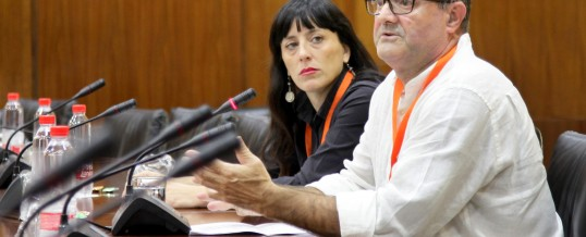 ENLACE comparece en el Parlamento Andaluz para valorar los Presupuestos 2018