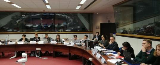 Gracias a ENLACE, la voz de las entidades de adicciones de Andalucía llega a Europa